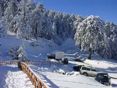 Troodos under snow