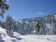 Heavy snow in Troodos